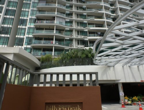 Condominium Residential Lift