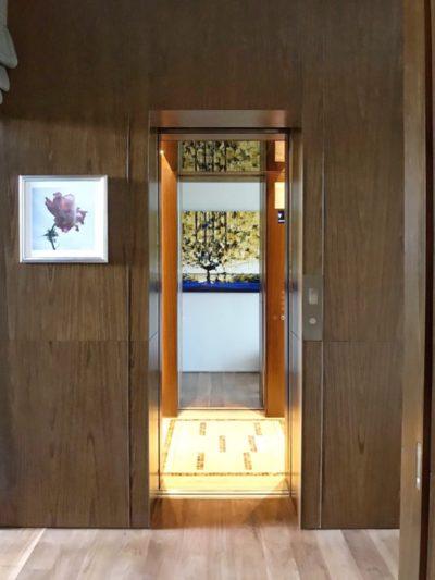 Centre Opening Auto Lift Doors